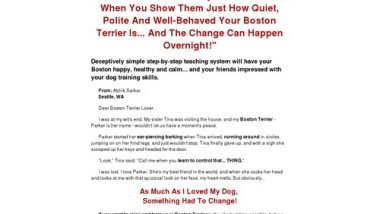 Boston Terrier Secrets